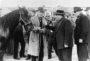 Pferdehändler in England